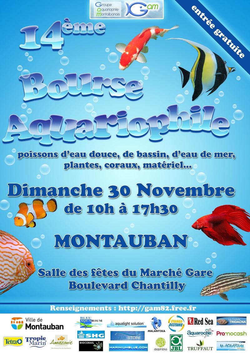 montauban-30novembre