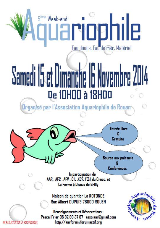 rouen-15novembre