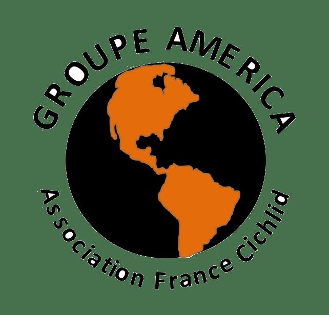 logo-groupe-america